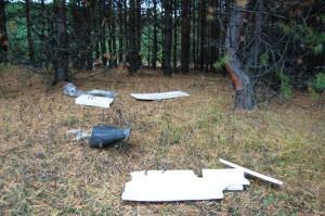 Легкий мусор раздувает по лесу
