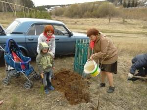 Посадка деревьев в память погибшим воинам